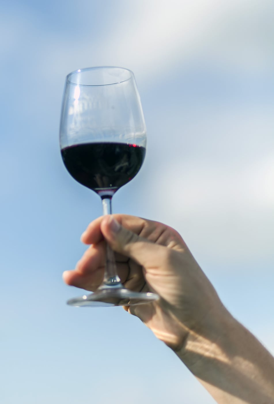 Image Result For National Wine Day