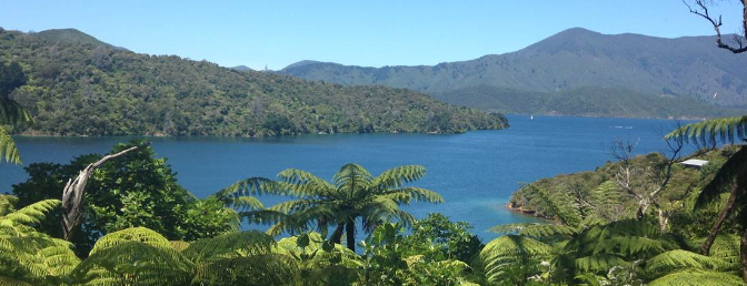 New Zealand – The Land of Diversity and Innovation